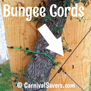 bungee-cords-to-keep-game-safe.jpg