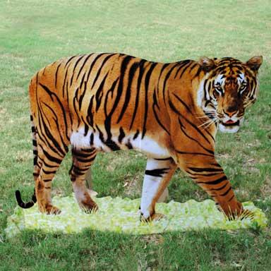 cardboard-tiger-stand-up.jpg