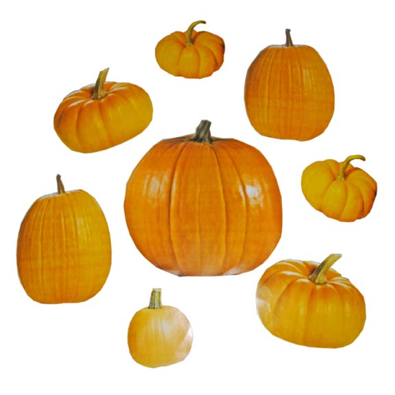 Fall festival ideas free fall carnival games ideas too for Pumpkin cut out ideas
