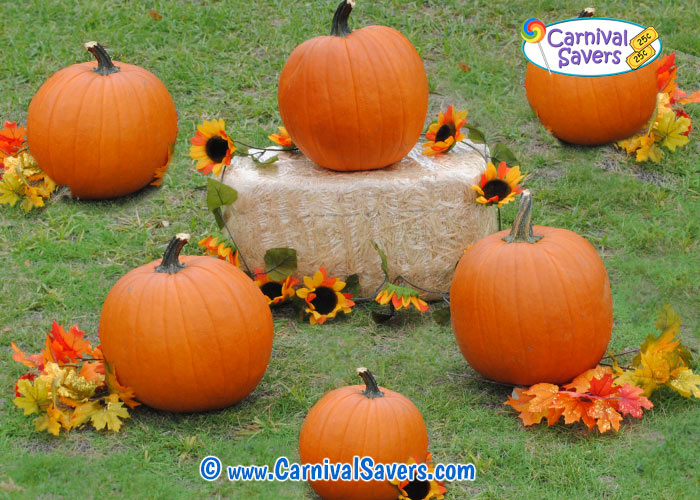 pumpkin-ring-toss-fall-festival-game.jpg