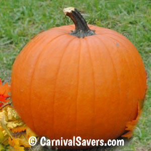 pumpkin-with-long-stem.jpg