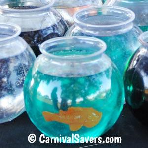 closeup-frightful-fishbowls.jpg