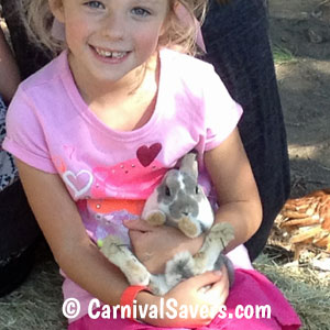 petting-zoo-little-girl-with-a-bunny.jpg