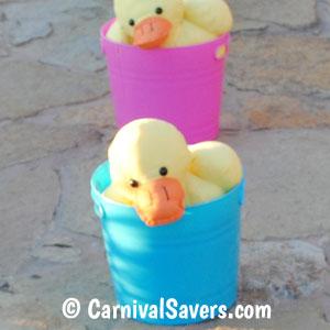 toy-ducks-in-plastic-buckets.jpg